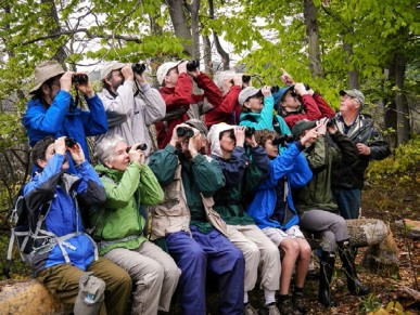Photo Essay: Essex County Ornithological Club Canoe Trips