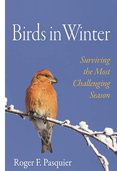Assets/bo48-6/cover_Birds_in_Winter.png